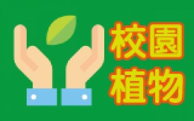 http://info.csps.tyc.edu.tw/plant/index0.htm